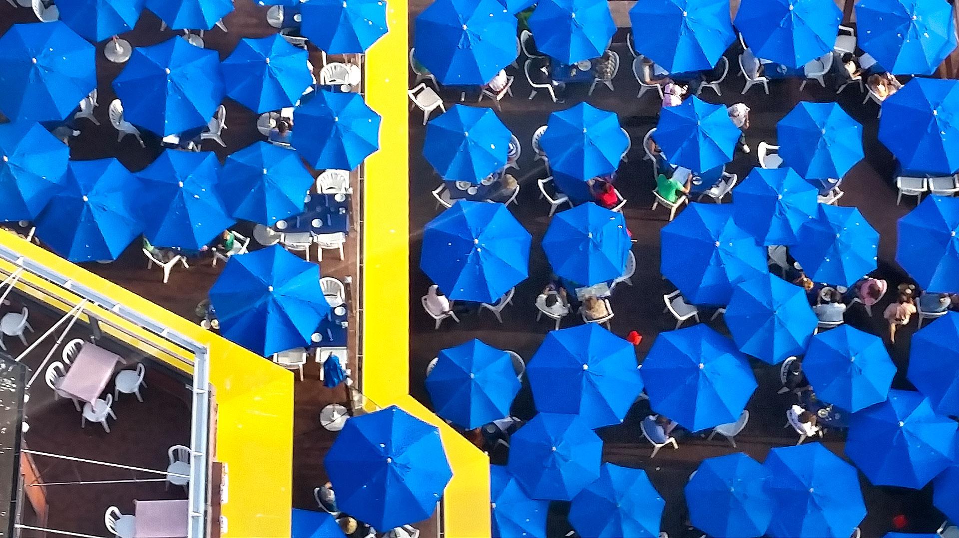 Blue Umbrellas in Seattle