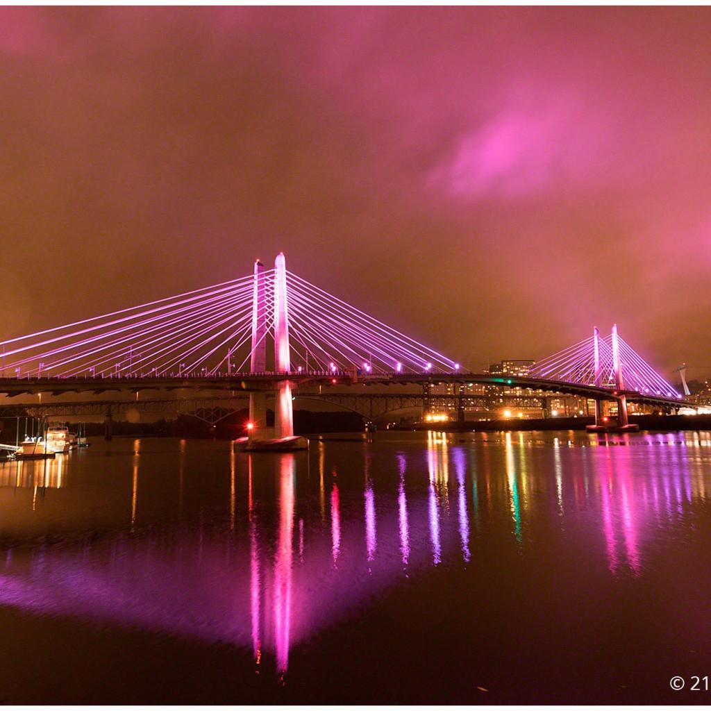 Tilikum Crossing Bridge Portland Oregon